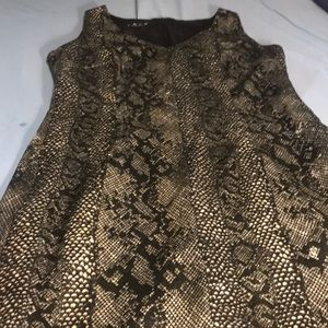 Beautiful python print dress.  Classic A line fit